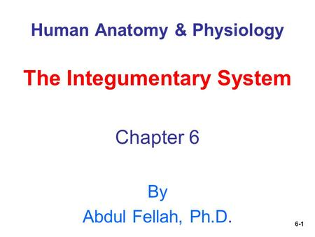 6-1 Human Anatomy & Physiology The Integumentary System Chapter 6 By Abdul Fellah, Ph.D.