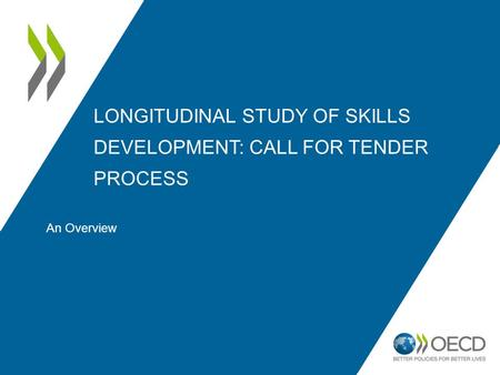 LONGITUDINAL STUDY OF SKILLS DEVELOPMENT: CALL FOR TENDER PROCESS An Overview.