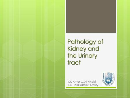 Pathology of Kidney and the Urinary tract Dr. Amar C. Al-Rikabi Dr. Hala Kassouf Kfoury.