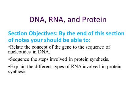 DNA, RNA, and Protein Section Objectives: By the end of this section of notes your should be able to: Relate the concept of the gene to the sequence of.