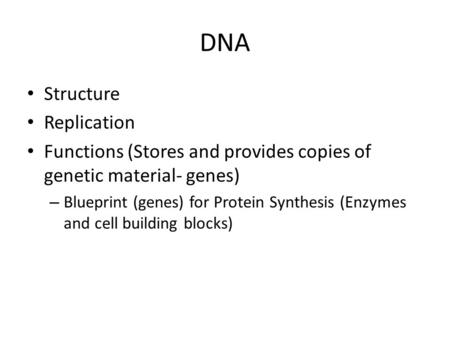 DNA Structure Replication Functions (Stores and provides copies of genetic material- genes) – Blueprint (genes) for Protein Synthesis (Enzymes and cell.