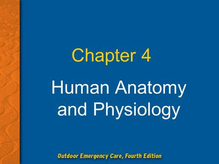 Human <strong>Anatomy</strong> <strong>and</strong> <strong>Physiology</strong>