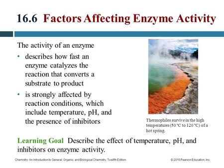 16.6 Factors Affecting Enzyme Activity