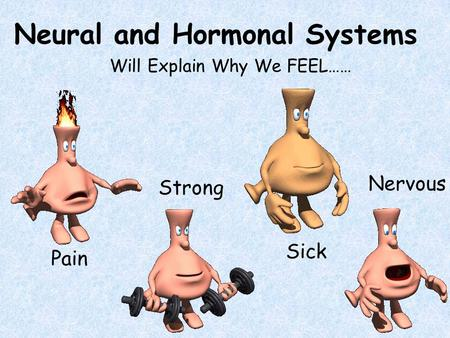 Neural and Hormonal Systems Will Explain Why We FEEL…… Pain Strong Sick Nervous.