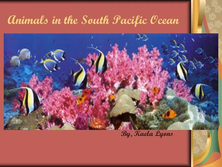 Animals in the South Pacific Ocean