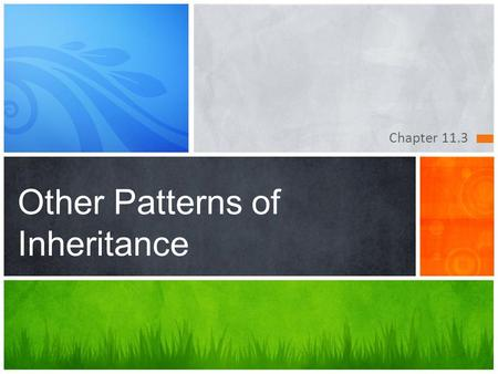Other Patterns of Inheritance