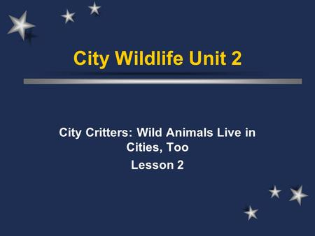 City Critters: Wild Animals Live in Cities, Too Lesson 2