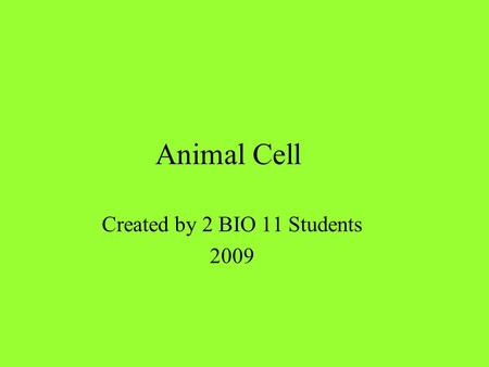 Animal Cell Created by 2 BIO 11 Students 2009. Animal Cell Model.