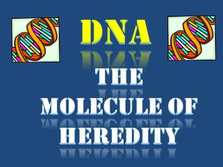 The molecule of heredity