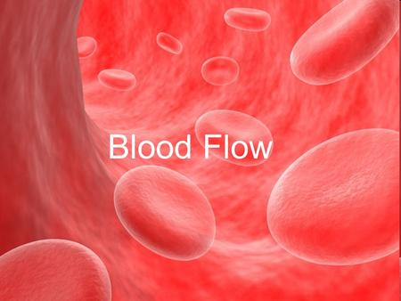 Blood Flow. Due to the pressure difference of two vessel ends.