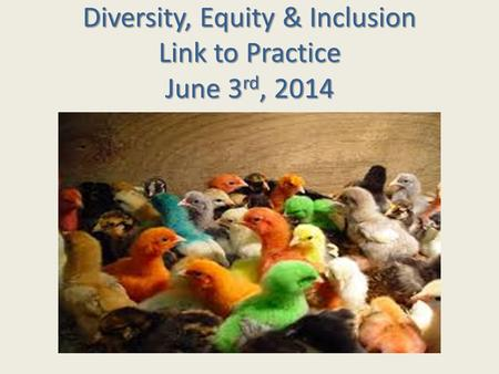 Diversity, Equity & Inclusion Link to Practice June 3rd, 2014