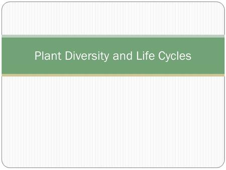 Plant Diversity and Life Cycles