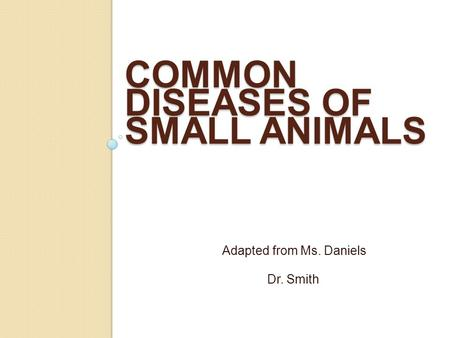 Common Diseases of Small Animals