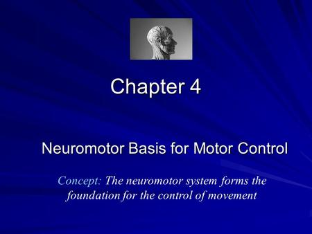 Neuromotor Basis for Motor Control