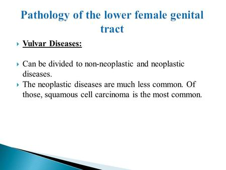 Vulvar Diseases:  Can be divided to non-neoplastic and neoplastic diseases.  The neoplastic diseases are much less common. Of those, squamous cell.