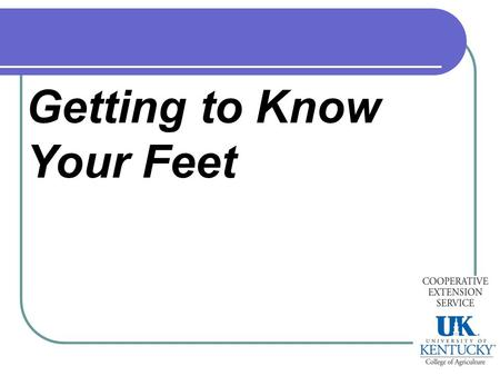 Getting to know your feet