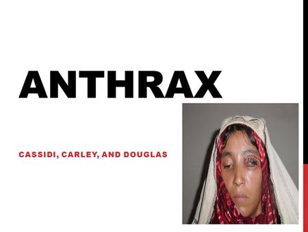 ANTHRAX CASSIDI, CARLEY, AND DOUGLAS. WHAT IS ANTHRAX…? Anthrax is an infectious disease caused by bacteria called Bacillus anthracis. Infection in humans.