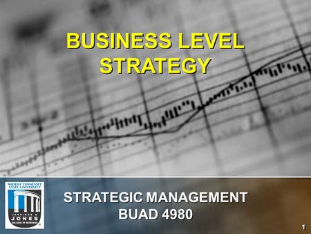 BUSINESS <strong>LEVEL</strong> STRATEGY <strong>STRATEGIC</strong> <strong>MANAGEMENT</strong> BUAD 4980