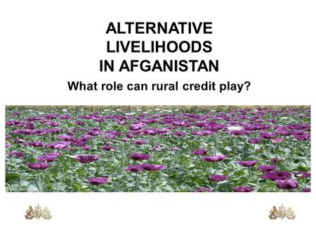 ALTERNATIVE LIVELIHOODS IN AFGANISTAN What role can rural credit play?
