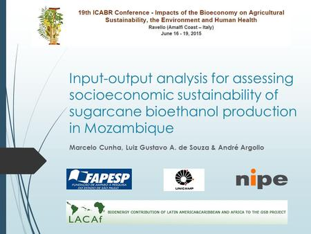 Input-output analysis for assessing socioeconomic sustainability of sugarcane bioethanol production in Mozambique Marcelo Cunha, Luiz Gustavo A. de Souza.