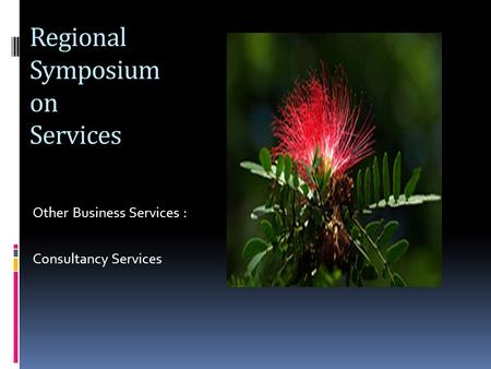 Regional Symposium on Services Other Business Services : Consultancy Services.