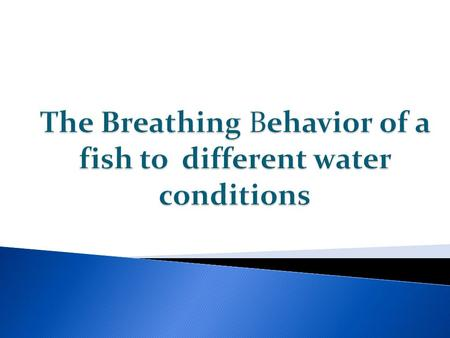 Fish breathe with the use of their gills that dissolves the oxygen in the water. And the mouth that co-ordinates operculum that produces a stream of water.