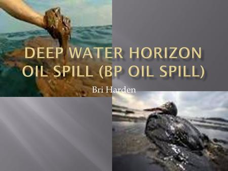 Bri Harden.  Its located in the Gulf of Mexico near Mississippi River Delta  Spill date: 20 April – 15 July 2010 Well officially sealed: 19 September.