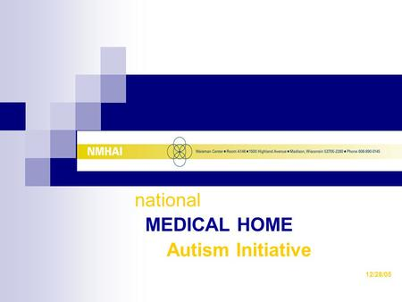 National MEDICAL HOME Autism Initiative 12/28/05.