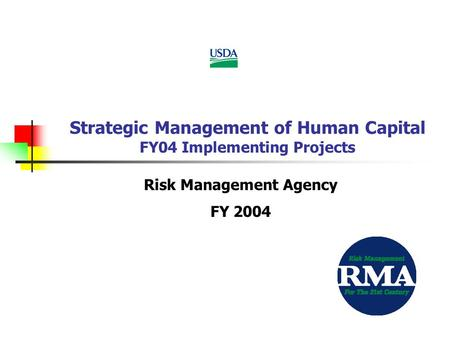 Strategic Management of Human Capital FY04 Implementing Projects Risk Management Agency FY 2004.