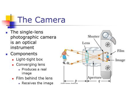 The Camera The single-lens photographic camera is an optical instrument Components Light-tight box Converging lens Produces a real image Film behind the.