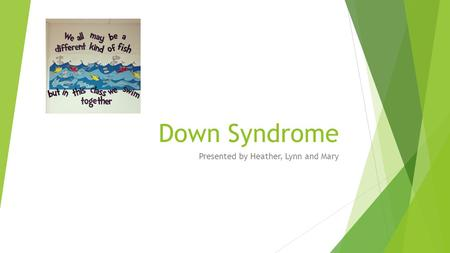 Down Syndrome Presented by Heather, Lynn and Mary.