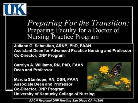 Preparing For the Transition: Preparing Faculty for a Doctor of Nursing Practice Program Juliann G. Sebastian, ARNP, PhD, FAAN Assistant Dean for Advanced.