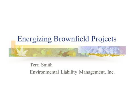 Energizing Brownfield Projects Terri Smith Environmental Liability Management, Inc.