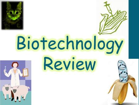 Biotechnology Review.