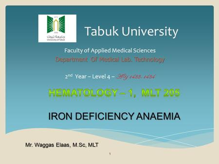 Tabuk University Faculty of Applied Medical Sciences Department Of Medical Lab. Technology 2 nd Year – Level 4 – AY 1433-1434 1 Mr. Waggas Elaas, M.Sc,