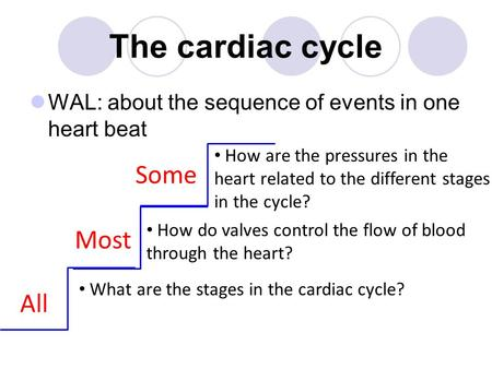 The cardiac cycle Some Most All