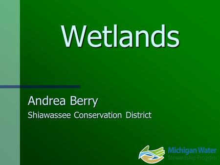 Wetlands Andrea Berry Shiawassee Conservation District.
