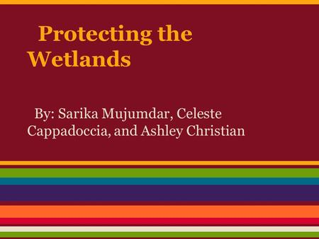 Protecting the Wetlands By: Sarika Mujumdar, Celeste Cappadoccia, and Ashley Christian.