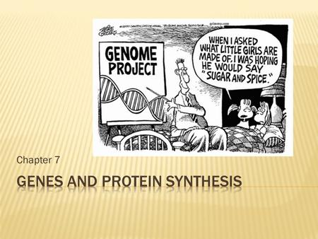 Genes and Protein Synthesis