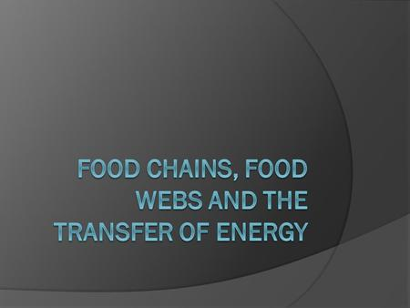 Food chains, food webs and the transfer of energy