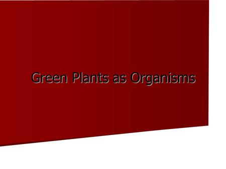 Green Plants as Organisms