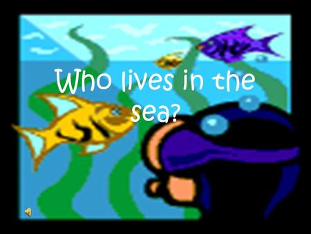 Who lives in the sea?.