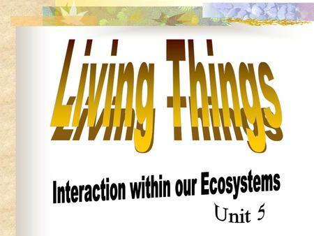 Interaction within our Ecosystems