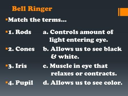 Bell Ringer  Match the terms…  1. Rodsa. Controls amount of light entering eye.  2. Conesb. Allows us to see black & white.  3. Irisc. Muscle in eye.