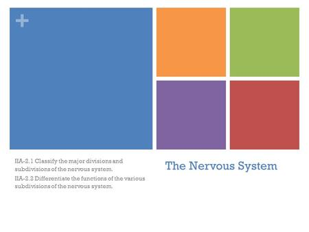 + The Nervous System IIA-2.1 Classify the major divisions and subdivisions of the nervous system. IIA-2.2 Differentiate the functions of the various subdivisions.