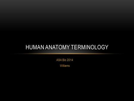 Human Anatomy Terminology