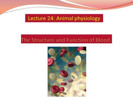 The Structure and Function of Blood
