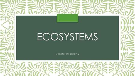 ECOSYSTEMS Chapter 2 Section 2. What is an ecosystem? The interaction of plants and animals and the physical environment where they live. Many factors.