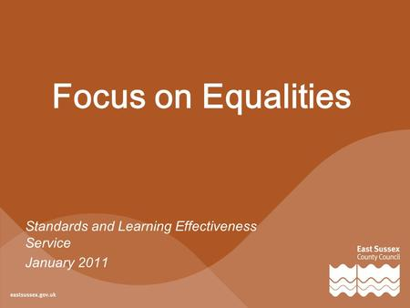 Focus on Equalities Standards and Learning Effectiveness Service January 2011.
