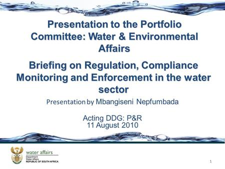 Presentation to the Portfolio Committee: Water & Environmental Affairs Presentation by Mbangiseni Nepfumbada Acting DDG: P&R 11 August 2010 1 Briefing.